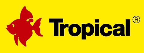 [Obrazek: tropical.jpg]
